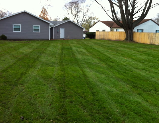 The Yard Men - Lawn Care Services in Macomb County Michigan - AFTER-IMAGE